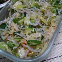 辛ネギじゃこ塩(レシピ)