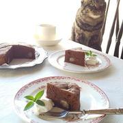 猫とおやつ♪ 栗のガトーショコラ
