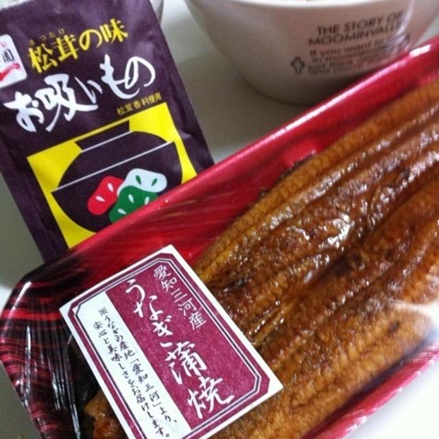 ウナ茶漬け(o^^o)