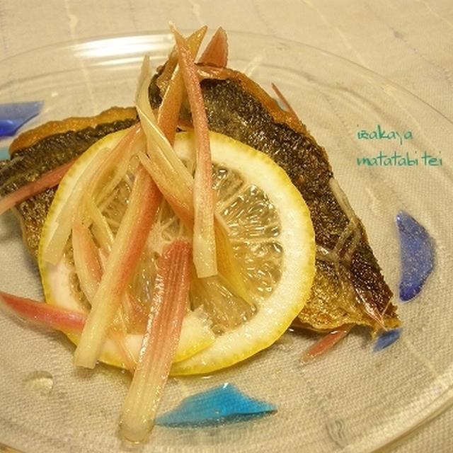吹き荒ぶ風の如く、鯵のレモン漬けと胡瓜の煮物