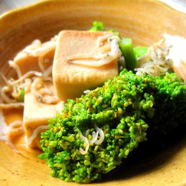 ブロッコリーと高野豆腐のさっぱり炒め 〜六月の野菜〜