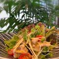 二本立てレッスン料理はカレーパウダー・ハリッサ―でスパイシー冷しゃぶサラダ!冷やし白たまぜんざい