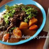 モニターレシピ!雑穀米で健康!!カフェ風プルコギカレー