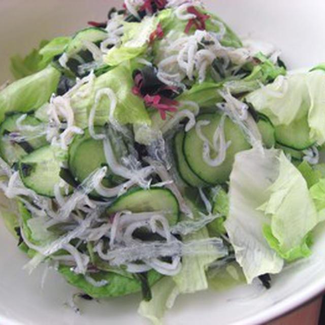 しらすのサラダ