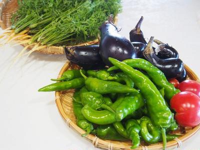 収穫野菜と八王子ショウガの食卓