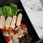 1月10日  鶏肉の スパイシー炒め弁当