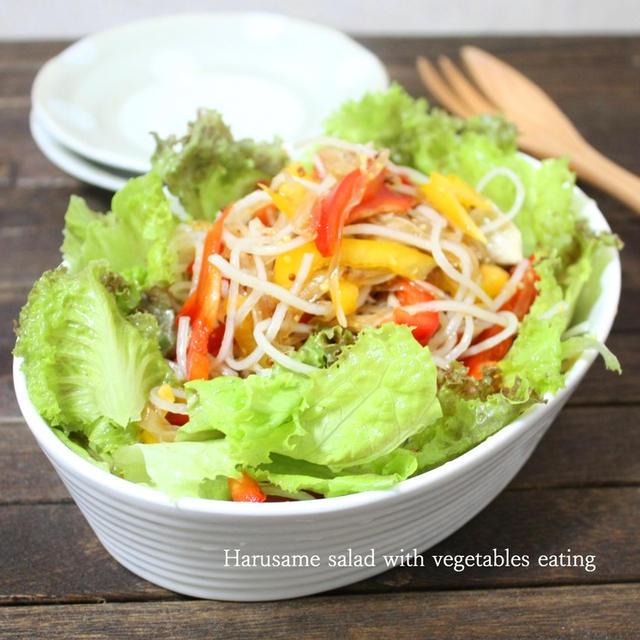 野菜を食べる春雨サラダ