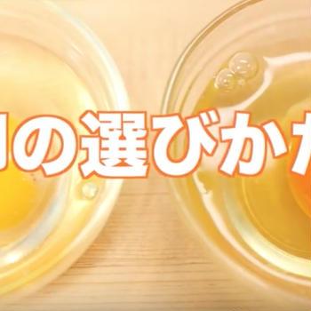 健康で安全な、卵の選び方【栄養士がわかりやすく解説!】