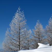 高峰山スノーシュートレッキング