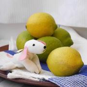 【うちごはん】国産レモンがやってきた!レモン酢&レモン塩でヘルシー生活♪
