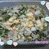小松菜ガーリックオニオン炒飯