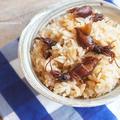 【掲載】旬を楽しんでキレイに!ホタルごはんレシピ@CafeGoogirl by Ayaccoさん