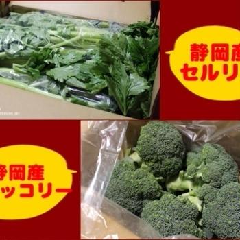 【静岡クッキングアンバサダーに就任いたしました ~ 静岡県と特産物の紹介。】