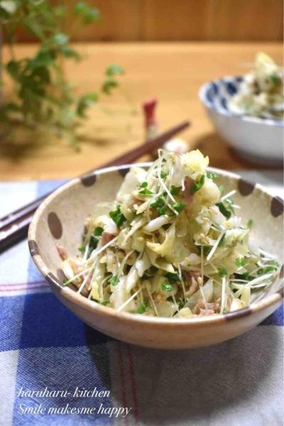 【レシピ】抱えて食べたい!キャベツとツナの中華風サラダ#無限キャベツ#作り置き#簡単副菜#5分おかず#節約