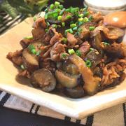 豚コマ肉とナスのピリ辛炒め