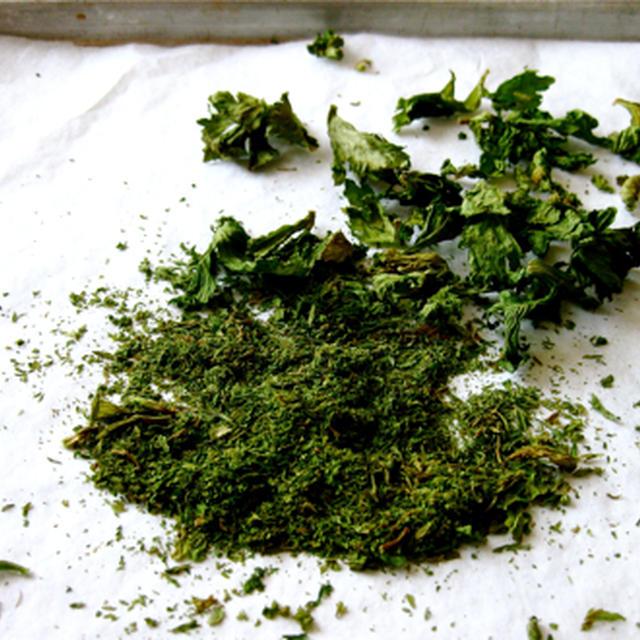 自家製、乾燥セロリの葉っぱ。