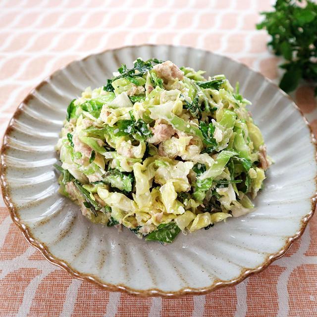 キャベツとクレソンのコールスローサラダ(レシピ:平岩 紗千代)