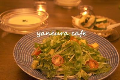 *お野菜たっぷりサラダうどん*