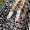 秋キャンプなら秋刀魚焼くでしょ!岩手切炭で秋刀魚を焼いてみた。
