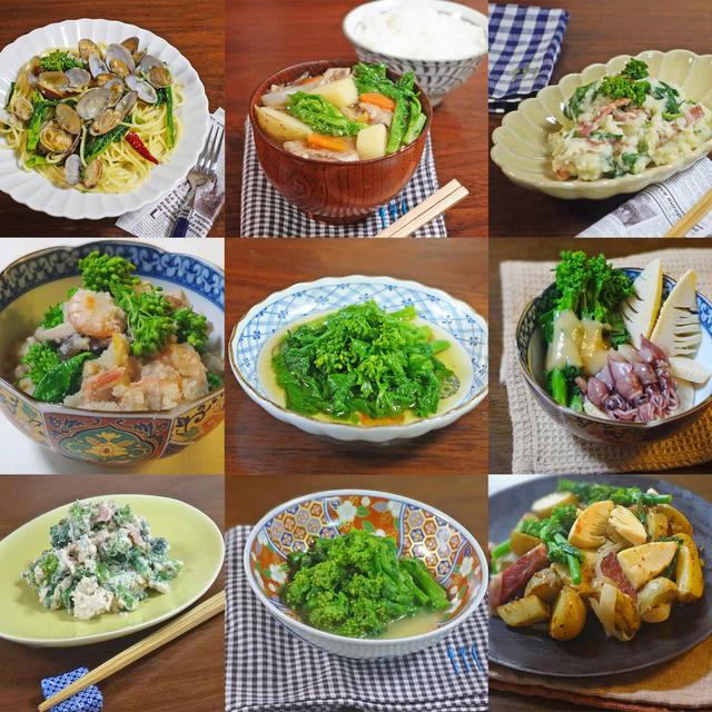 春の食卓を彩る 菜の花レシピ9選