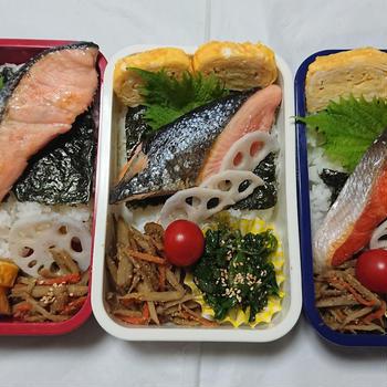 2月28日(金) 鮭弁当