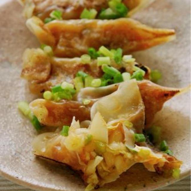 白菜のキムチ風餃子