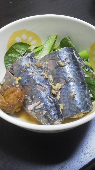 鯖の梅生姜煮~酸っぱくなくても梅の味~