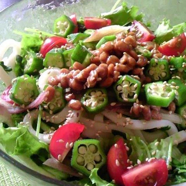 【レシピ】納豆とオクラでネバネバ・サラダうどん