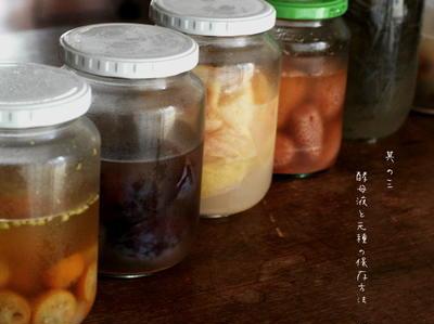 「酵母液と元種の保存方法」 連載の補足 <7/15掲載>