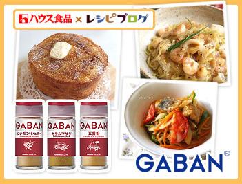 GABANのミックススパイス「シナモンシュガー・ガラムマサラ・五香粉」で簡単レシピを世界の味に!