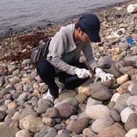 化石採取でデトックス