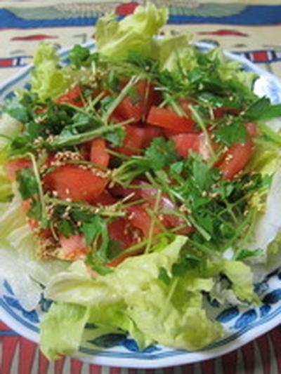 「トマトとレタスのサラダ」