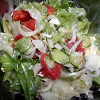 新玉ねぎ、レタス、トマト、キューリ、のサラダ