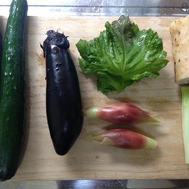 【検証】山形県の郷土料理「だし」を美味しく作る3つのコツとは?!