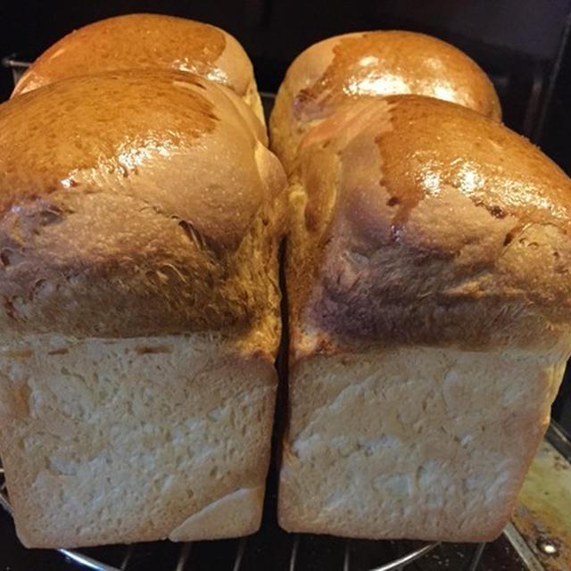 2015年9月18日(金)と21日(月・祝) 食パン(saf)