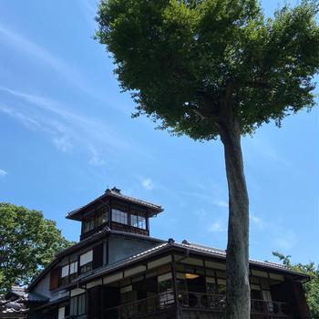 京都 旧三井家下鴨別邸と紫陽花園