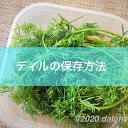 収穫したディルを長期保存する方法(ディルオイル&ディルバター)