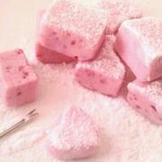 イチゴの生チョコ《バレンタイン》