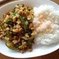 高野豆腐と大根のなんちゃってガパオ飯