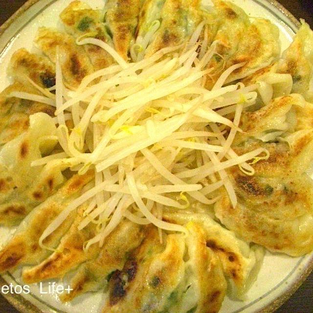 塩麹入り焼き餃子浜松風