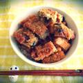豆腐の海苔&梅干巻き焼きとトロトロ玉ねぎタレの丼