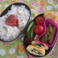 お弁当 & キュキュットCLEAR泡スプレー