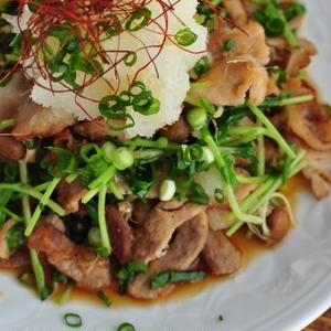 がっつりお肉をさっぱりいただく!「大根おろし×豚肉」のおすすめレシピ