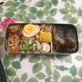さわら弁当と米入りミートボール弁当。一番搾り超芳醇。