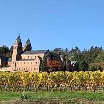 秋晴れのワイン畑とスローフードレストラン・ラインガウ