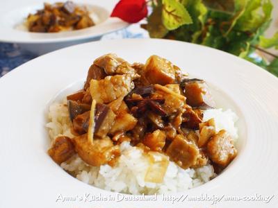 【主食】台湾の家庭料理!ルーローファン(魯肉飯) と新しいキャリーケースと欲しいもの。