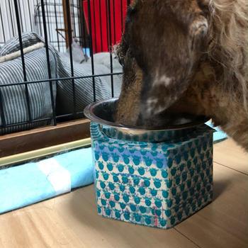 牛乳パック工作〜犬の食器台〜