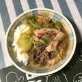 【春休みごはん】春休みの最後を飾るのは!☆牛肉と春キャベツの中華丼