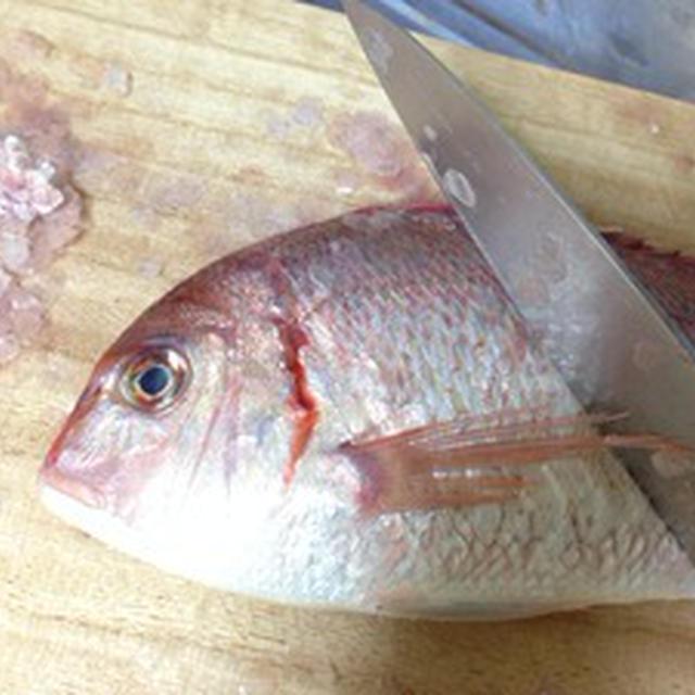 【検証】美味しいち鯛の酒蒸しを作る3つのコツとは?!