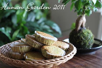 抹茶のマドレーヌ レシピ